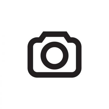 Dirk van Gestel
