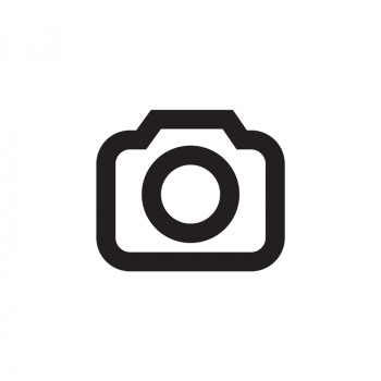 Susanne Vermeulen